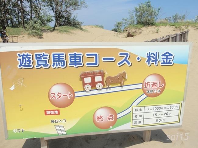 鳥取砂丘 (20)