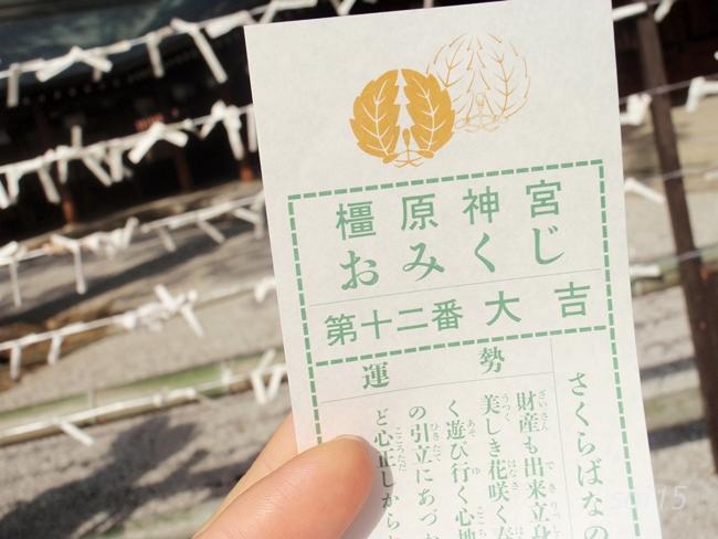 おみくじ 橿原神宮 初詣 (13)